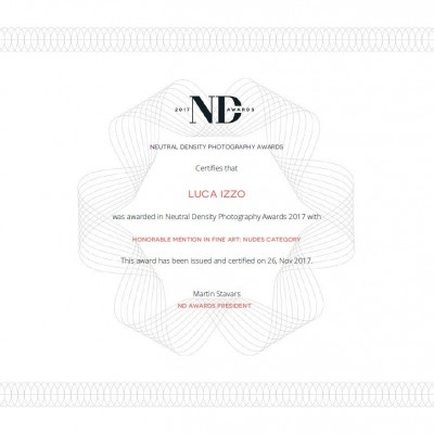 nd certifcate 2017 luca izzo